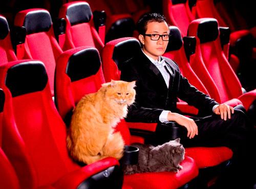 Lương Mạnh Hải, Hiếu Hiền tạo dáng với mèo - 6