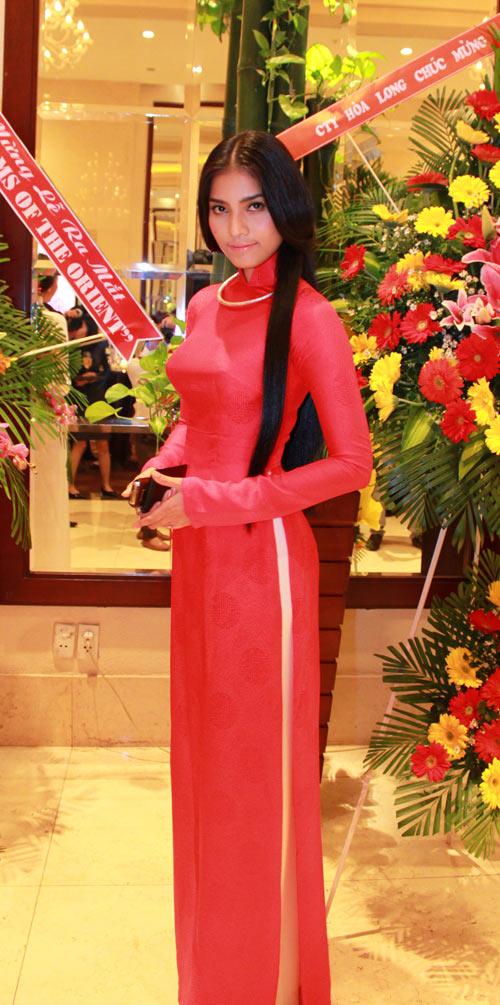 Giai nhân Việt duyên dáng với áo dài - 2