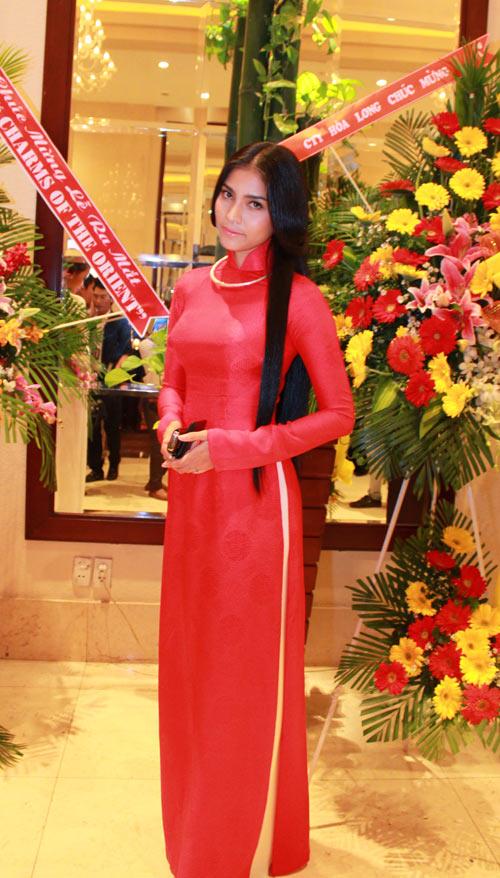 Giai nhân Việt duyên dáng với áo dài - 3