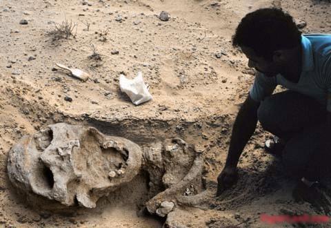 Nghĩa trang người khổng lồ tại Châu Phi - 1