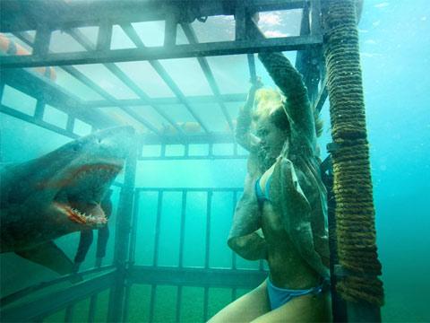 Đầm cá mập: Sợ hãi tột đỉnh với 3D - 3