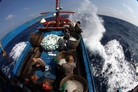 Thót tim xem ngư dân săn... cá mập - 1