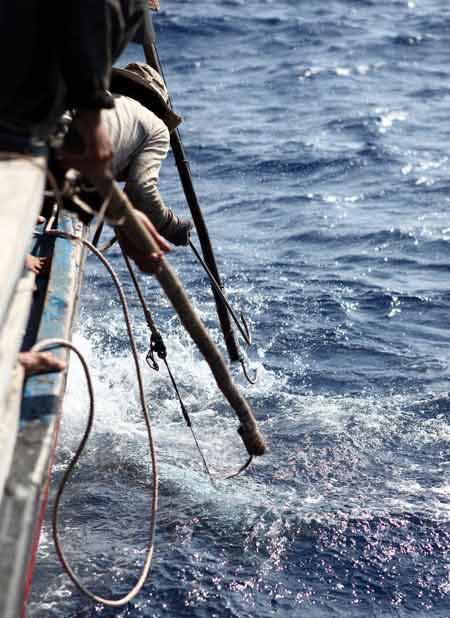 Thót tim xem ngư dân săn... cá mập - 2