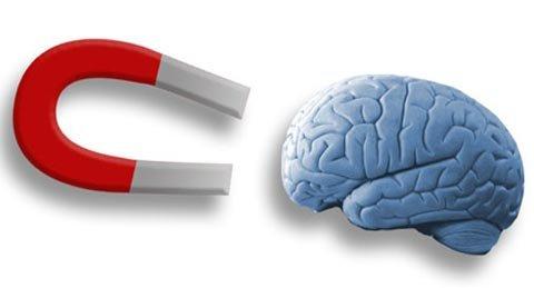 Dùng nam châm điều khiển bộ não - 1