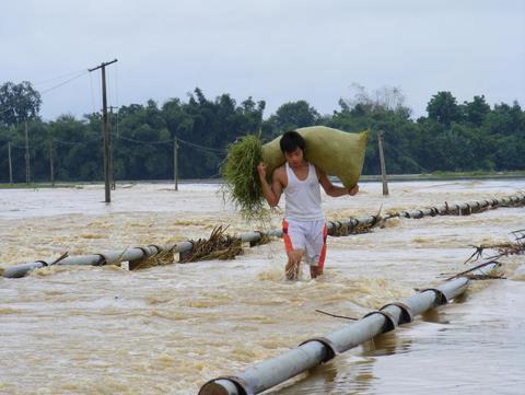 Thanh Hoá, Nghệ An chìm trong biển nước - 4