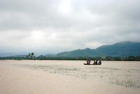 Thanh Hoá, Nghệ An chìm trong biển nước - 12