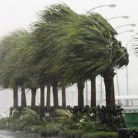 "Miền Trung ""đón"" bão"