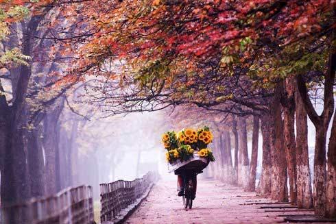 Lắng nghe và cảm nhận: Nhớ mùa thu Hà Nội - 3