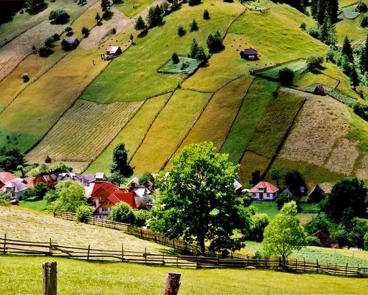 Khung cảnh đơn xơ mà vô cùng quyến rũ, thanh bình ở Transilvania. Ngôi làng đẹp như tranh vẽ đủ sức khiến du khách xao xuyến.