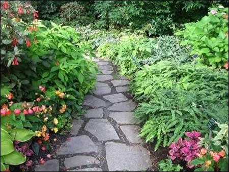 Vườn bách thảo Montreal - 5
