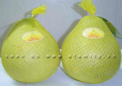 Công dụng tuyệt vời của trái bưởi, Sức khỏe đời sống, suc khoe, qua buoi, giam can, stress, lam dep da, vitamin, ung thu