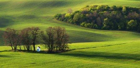 Choáng ngợp trước đồng cỏ xanh ngút ngàn ở Moravia - 8