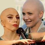 Ca nhạc - MTV - Sao nữ cạo trọc đầu vì nghệ thuật