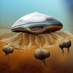 Phi thường - kỳ quặc - Người ngoài hành tinh trông giống sứa?