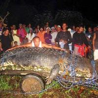 Ngắm cá sấu lớn nhất thế giới