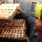 Thị trường - Tiêu dùng - Một quả trứng năm lần đóng phí