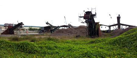 Bán gỗ dăm cho TQ: Hàng loạt DN phá sản - 1