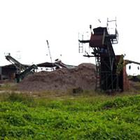 Bán gỗ dăm cho TQ: Hàng loạt DN phá sản