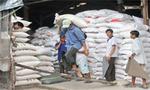Thị trường - Tiêu dùng - Mua tạm trữ gạo: giá khó đột biến