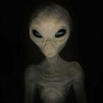 Tin tức trong ngày - Người ngoài hành tinh tới trái đất nghỉ mát?