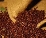 Thị trường - Tiêu dùng - Lượng tồn kho thấp, giá cà phê đẩy lên cao