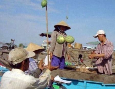 Những hình ảnh chỉ có ở Việt Nam (69) - 5