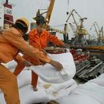Thị trường - Tiêu dùng - Xuất khẩu gạo sẽ như... giải ngoại hạng!