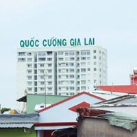 V sao tri phiu Quc Cng Gia Lai ?