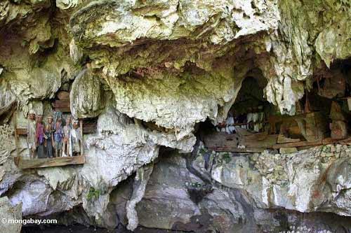 Độc đáo tục treo quan tài trên vách đá ở Philippines - 13