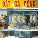 Thị trường - Tiêu dùng - Quán ăn trục lợi từ gà thải