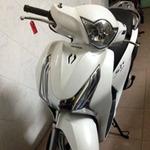 Ô tô - Xe máy - Honda SH giá rẻ lộ thêm ảnh nóng