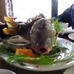 Ẩm thực - Rùng mình món cá còn ngáp trên bàn tiệc