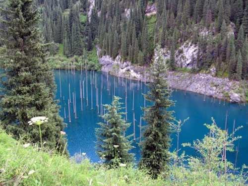 Kaindy - hồ nước kỳ lạ nhất thế giới - 1
