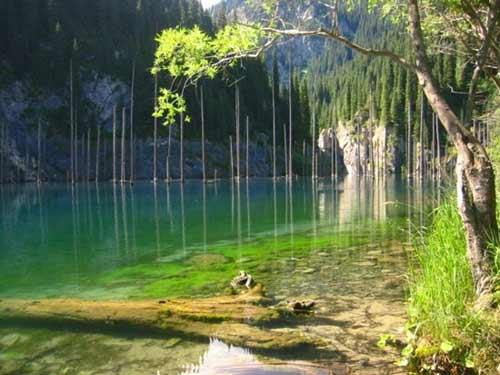 Kaindy - hồ nước kỳ lạ nhất thế giới - 3