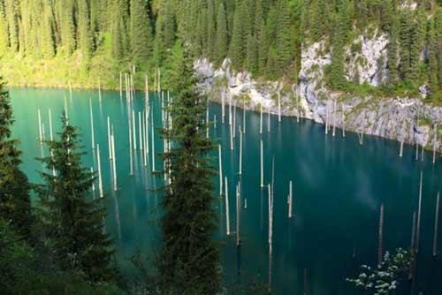 Kaindy - hồ nước kỳ lạ nhất thế giới - 4