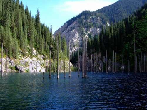 Kaindy - hồ nước kỳ lạ nhất thế giới - 5