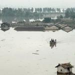 Tin tức trong ngày - Triều Tiên chìm trong mưa lũ