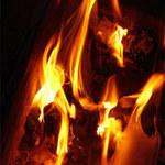 An ninh Xã hội - U60 đốt nhà bố đẻ rồi cắt cổ tự sát