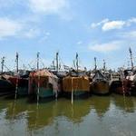 Tin tức trong ngày - 9000 tàu cá Trung Quốc ra Biển Đông