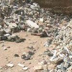 Tin tức trong ngày - Phát hiện hố chôn tập thể ở thủ đô Syria