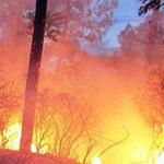 Tin tức trong ngày - Cháy rừng dữ dội giữa thành phố Vinh