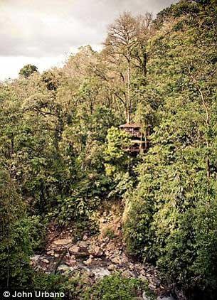 Độc đáo ngôi làng trên cây - 2