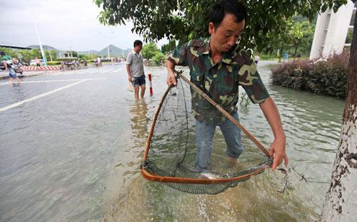 Chùm ảnh: Bão Haikui tàn phá Trung Quốc - 11