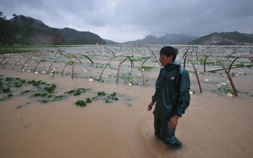 Chùm ảnh: Bão Haikui tàn phá Trung Quốc - 10