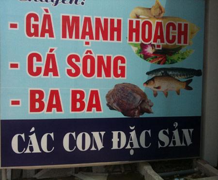 Những hình ảnh chỉ có ở Việt Nam (96) - 5