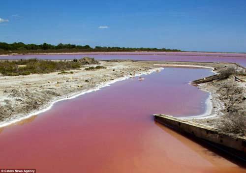 Hồ nước đỏ như máu ở Pháp - 3