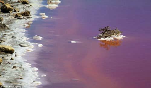 Hồ nước đỏ như máu ở Pháp - 2
