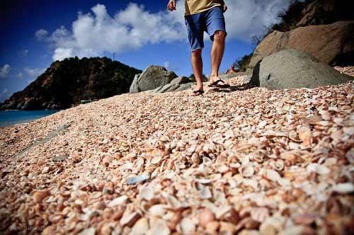 Những bãi biển vỏ sò tuyệt đẹp của thế giới - 10