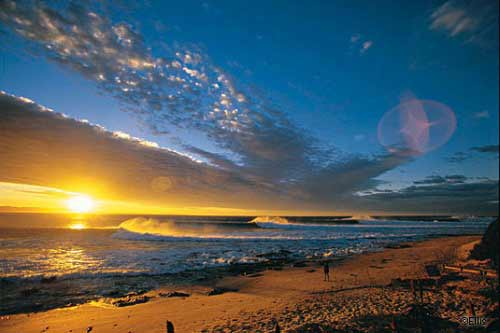 Những bãi biển vỏ sò tuyệt đẹp của thế giới - 12