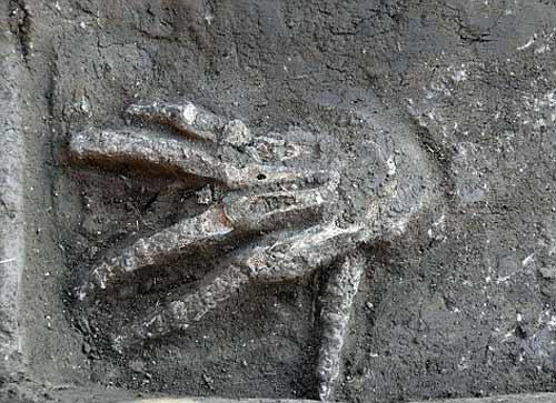 16 bàn tay bị chôn vùi ở Ai Cập - 1
